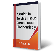 A Guide to Twelve Tissue Remedies of Biochemistry by E.P.Anshutz